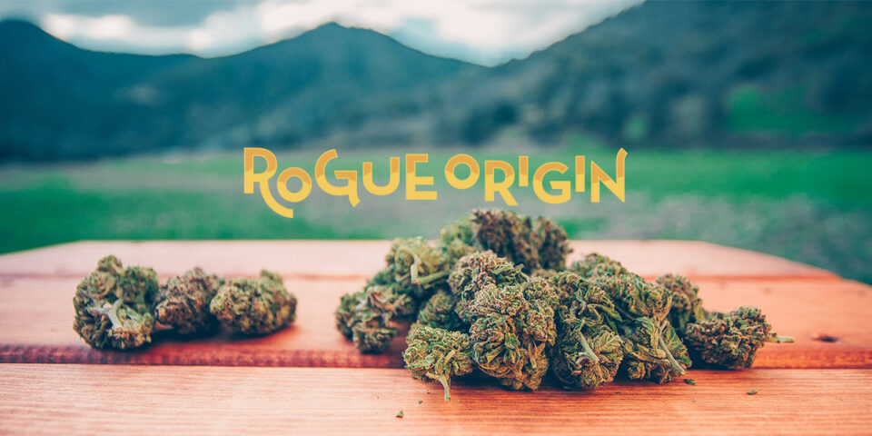 rogue-origin-og-img-scaled.jpg